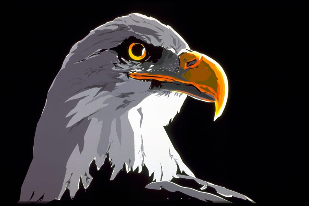 American Eagle Computer Drawing